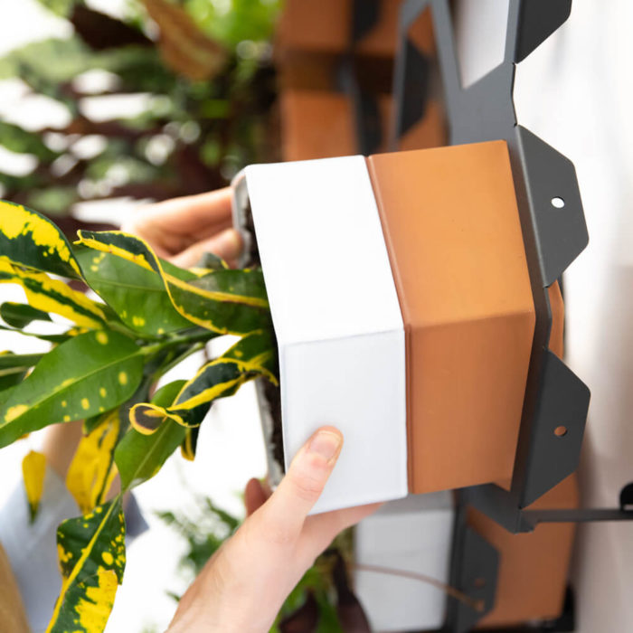 This vertical planter makes a statement in your natural interior, for a welcoming and restorative atmosphere. Achieve a botanical style that's long lasting and easy to care for. An ideal interior living wall kit consisting of just the right number of terracotta planters and frames for your space. There are several kits to choose from, and you can buy separates to grow your garden further. This modular living wall system lets you customise the look, with a choice of kits to suit the space and style of your room (S-XL). There's so much potential to design your perfect layout! Water your vertical horticulture garden from the top of each terracotta planter, through the specially designed holes. The slope to prevents overflowing. The natural terracotta planters and frames are made to be visible, with a beautiful design, texture and quality. The frames are stylishly made from powder coated steel. Reconnect your home interior with nature with a vertical living wall; your mind and body will thank you for it. Bringing nature into our home for wellness called biophilic interiors. Create a vertical living wall statement piece, an urban jungle bathroom, vertical garden kitchen or a relaxing oasis in a bedroom with sleep inducing plants like mother in laws tongue, spider plants and more. Add some air purifying and calming plants in your vertical planter, like lavender and peace lilies, creating your dream nature inspired home decor. Plants not included. These beautiful terracotta planters and frames are made in the UK with passion, expertise and precision.