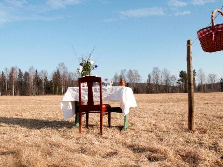 Table for One: Dine alone in Swedish meadow and name your price
