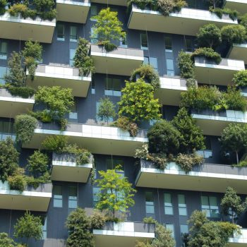 Living in an apartment doesn't mean you can't have trees! Even if your access to nature is restricted by city living, the residents in these apartments gain a natural perspective.