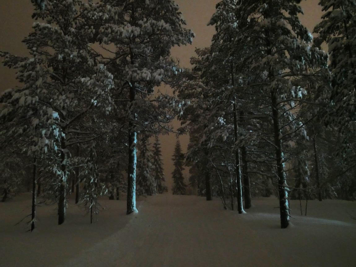 The snow makes it quite easy to see where you're going when skiing after dark. I also had a head torch. Utterly magical! Sälen, Dalarna county, Sweden.