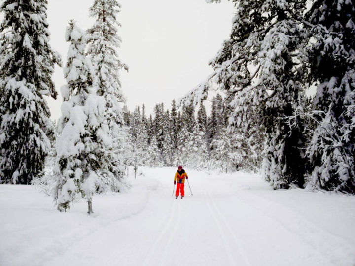 Experiencing Silence, Skiing & Cross-Country Skiing in Sweden – Sälen, Dalarna County
