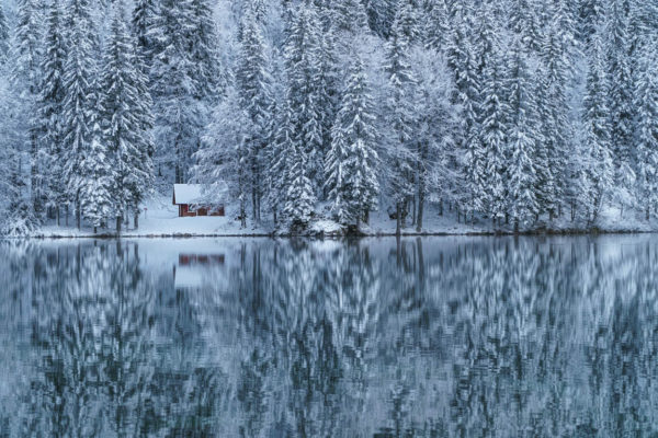 A cabin in the woods. Peace and tranquility in extreme weather excites and calms the soul. Image by Mauro Zamarian on Unsplash.com.