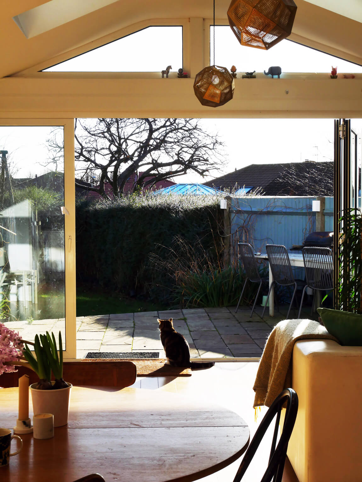 Cat looking out over the garden, enjoying the springtime sun. The patio slabs are close in colour to the wood flooring inside, to give a seamless indoor-outdoor transition.