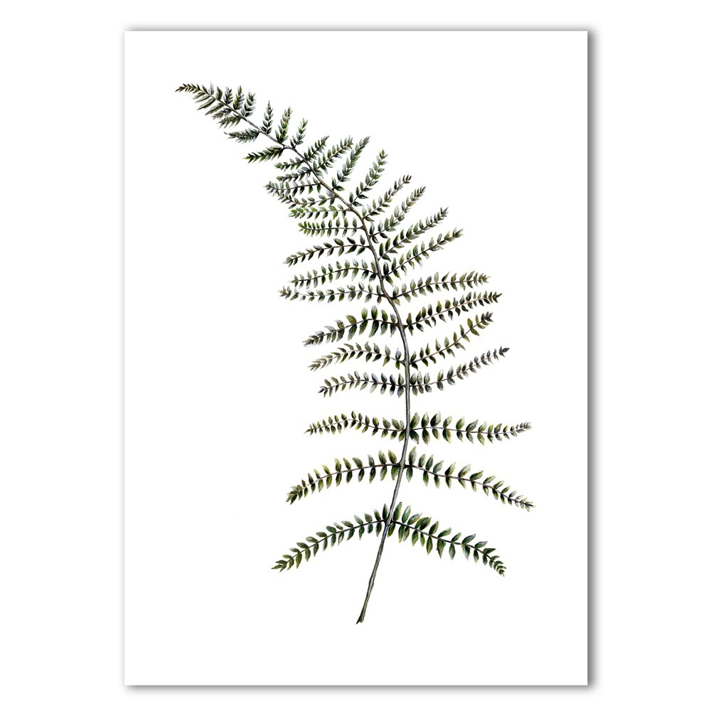 Fern print by Dollybirds Art on Chalk & Moss