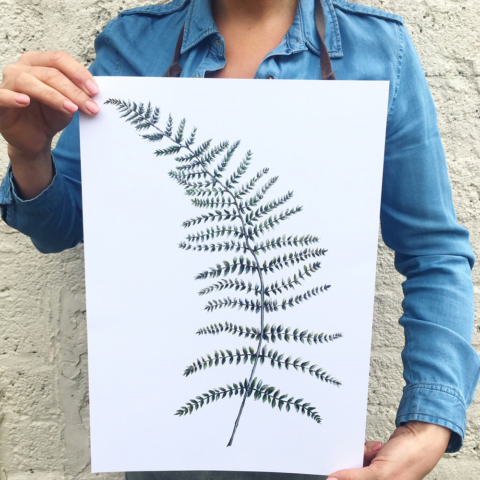 Wild fern print by Dollybirds Art on chalkandmoss.com