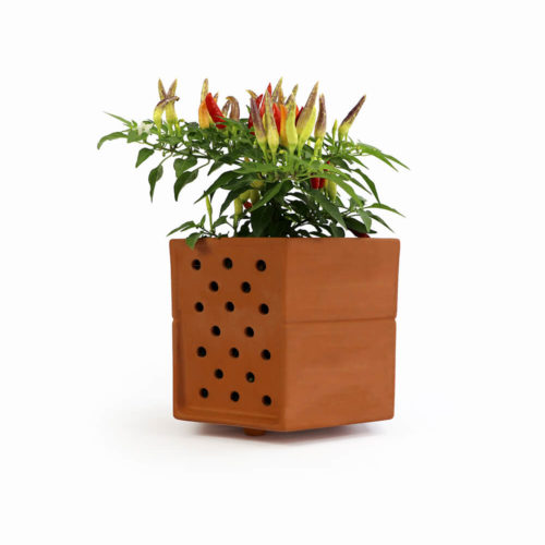 A living wall terracotta planter for use with the Horticus planter frame or vertical garden planter kit. Hang a single plant, use the terracotta planter as a standalone plant pot, or create a wall garden pattern with the planters and frames to expand your green habitat. Designed to fit with the expertly made powder steel Horticus planter frames. Some variation in colour occurs naturally from the terracotta firing process. Water plants through the specially designed holes and sloping surface on the top of the planter.