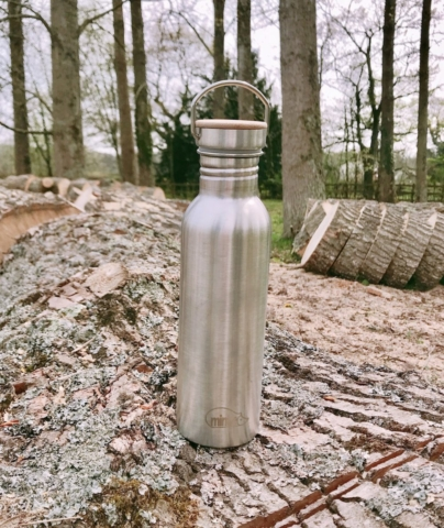 750ml stainless steel water bottle with screw top lid - Mintie