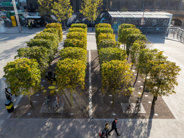 Connecting cities with nature: Planted Cities at LDF